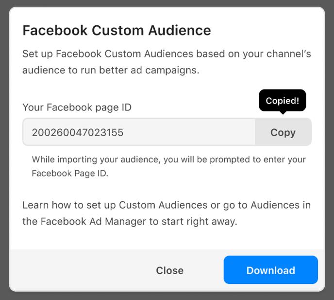 Facebook Custom Audience modal